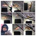 島流しの刑の直也さんの静岡県沼津市でのネンブツダイの釣果写真
