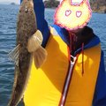 Junjun さんのコチの釣果写真