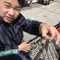 金(きん)さんの神奈川県でのマハゼの釣果写真