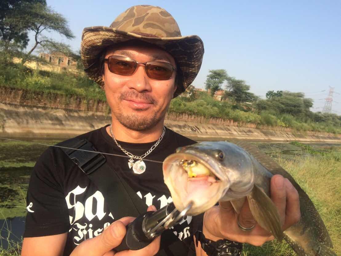 RYUJIさんの投稿画像,写っている魚はライギョ