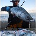ヒ グさんの北海道島牧郡での釣果写真