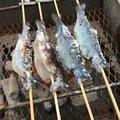 T田さんの東京都練馬区での釣果写真