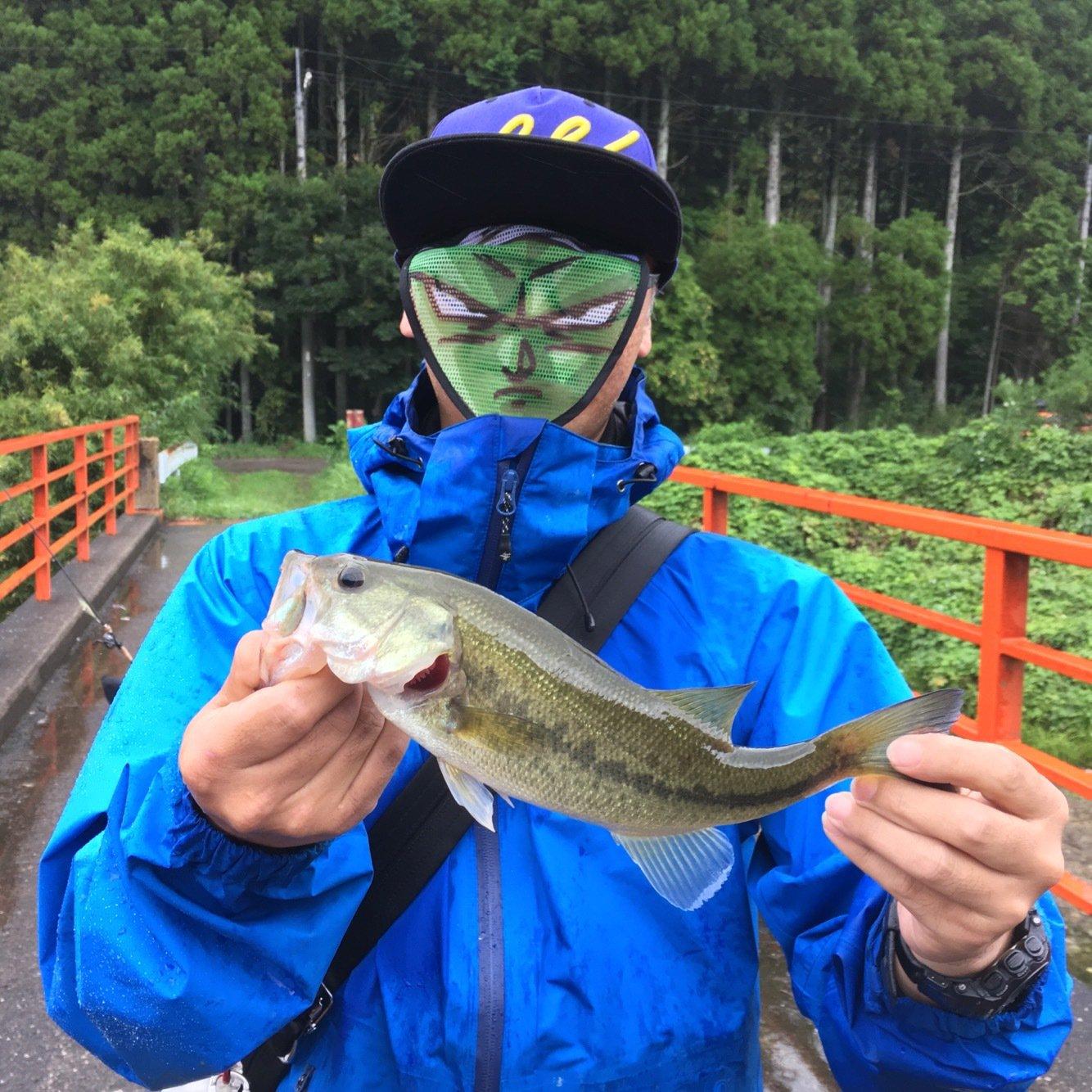 ノリリンさんの投稿画像,写っている魚はブラックバス