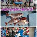 ☆*:真鯛中毒*:☆さんの千葉県山武市での釣果写真