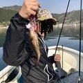 kappatoshiさんの三重県北牟婁郡での釣果写真