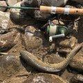 モコさんの岩手県八幡平市での釣果写真