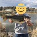 れんちょんさんの宮城県登米市での釣果写真