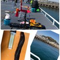 キラままさんの愛知県知多郡での釣果写真