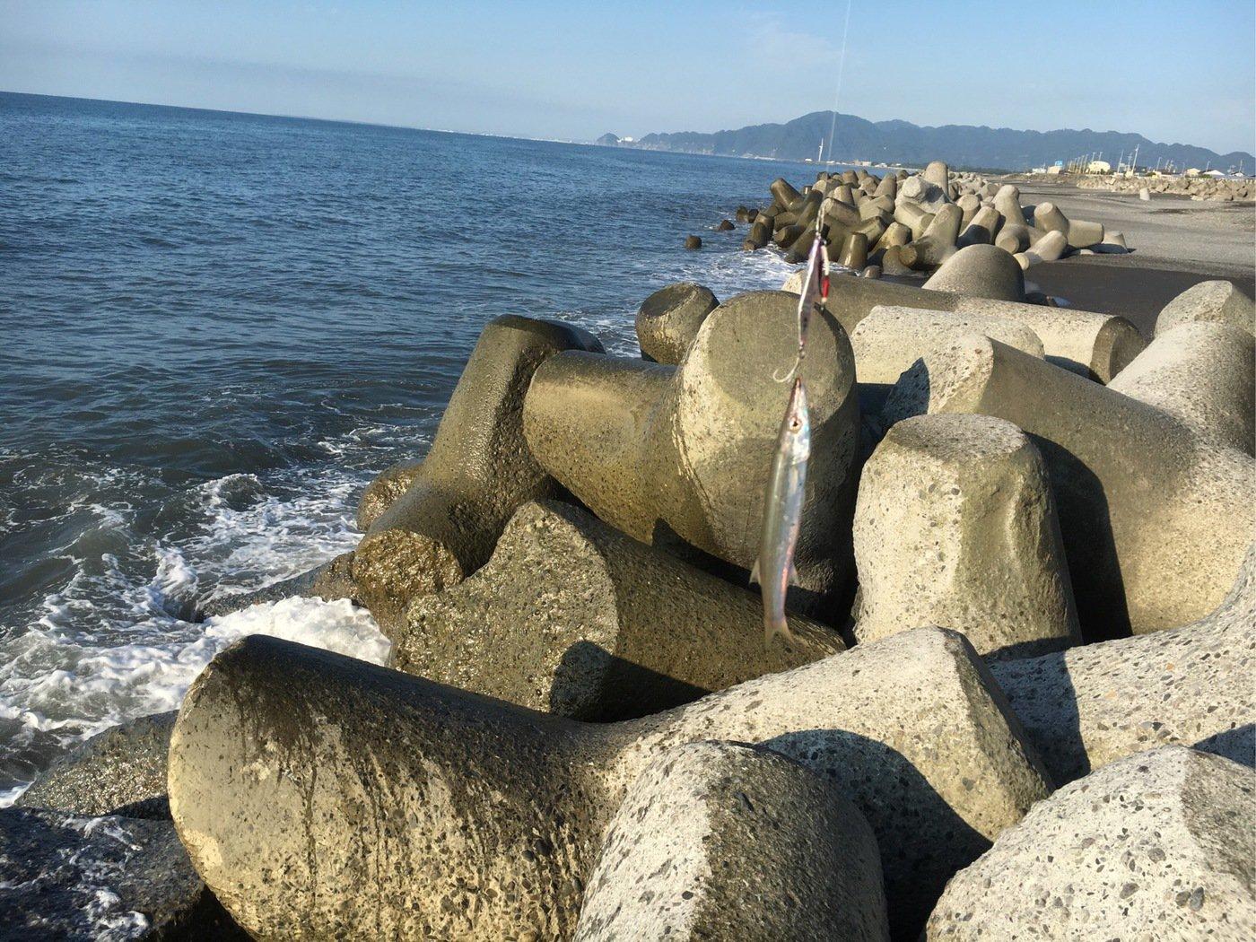 ヒロッシーさんの投稿画像,写っている魚は
