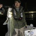 すけたろうさんの愛知県東海市での釣果写真