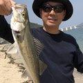 ながのさんの福岡県糸島市でのスズキの釣果写真