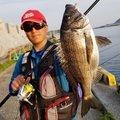 ゆうと@ジョイナスフィッシングさんの山口県下松市での釣果写真