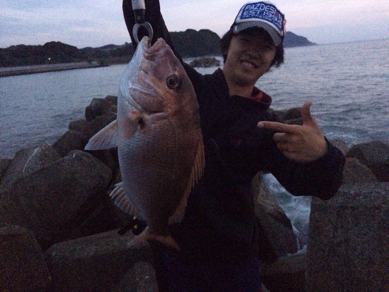 ヒキジリさんの投稿画像,写っている魚はマダイ