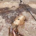 Ku Taさんの沖縄県沖縄市での釣果写真