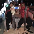 ま   り  んさんの大阪府門真市での釣果写真