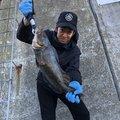 Taku Yamashitaさんの北海道函館市での釣果写真