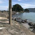 えるさんの高知県須崎市での釣果写真