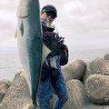 Udmanさんの佐賀県唐津市での釣果写真