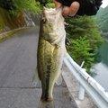 田中奏多さんの大分県宇佐市での釣果写真