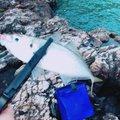 はっしぃさんの新潟県西蒲原郡での釣果写真
