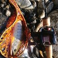 MAさんの和歌山県東牟婁郡での釣果写真