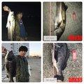 ナオキさんの大阪府豊中市での釣果写真