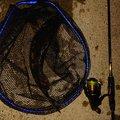 つっかさんの岩手県上閉伊郡での釣果写真