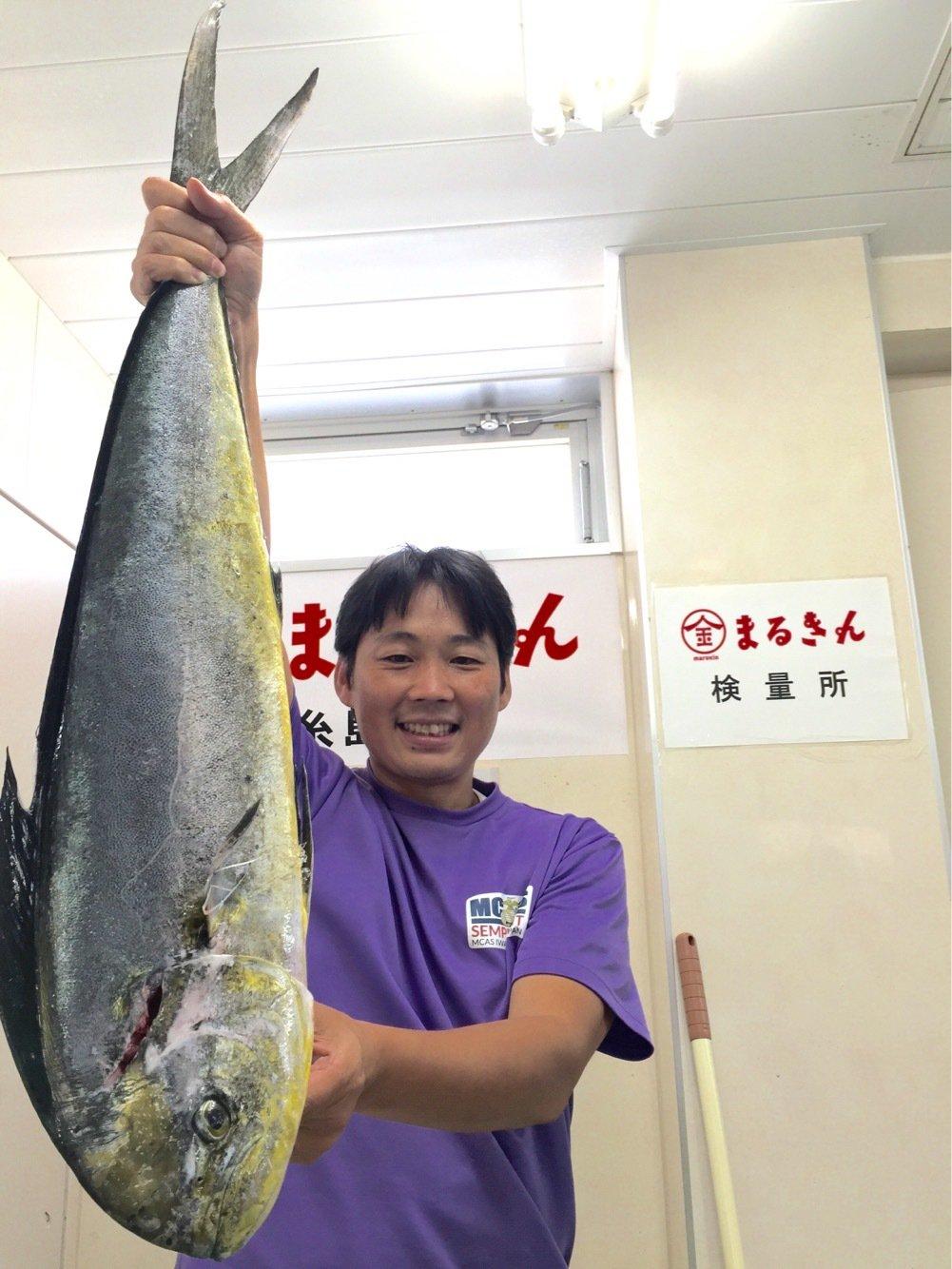 てつさんの投稿画像,写っている魚はシイラ