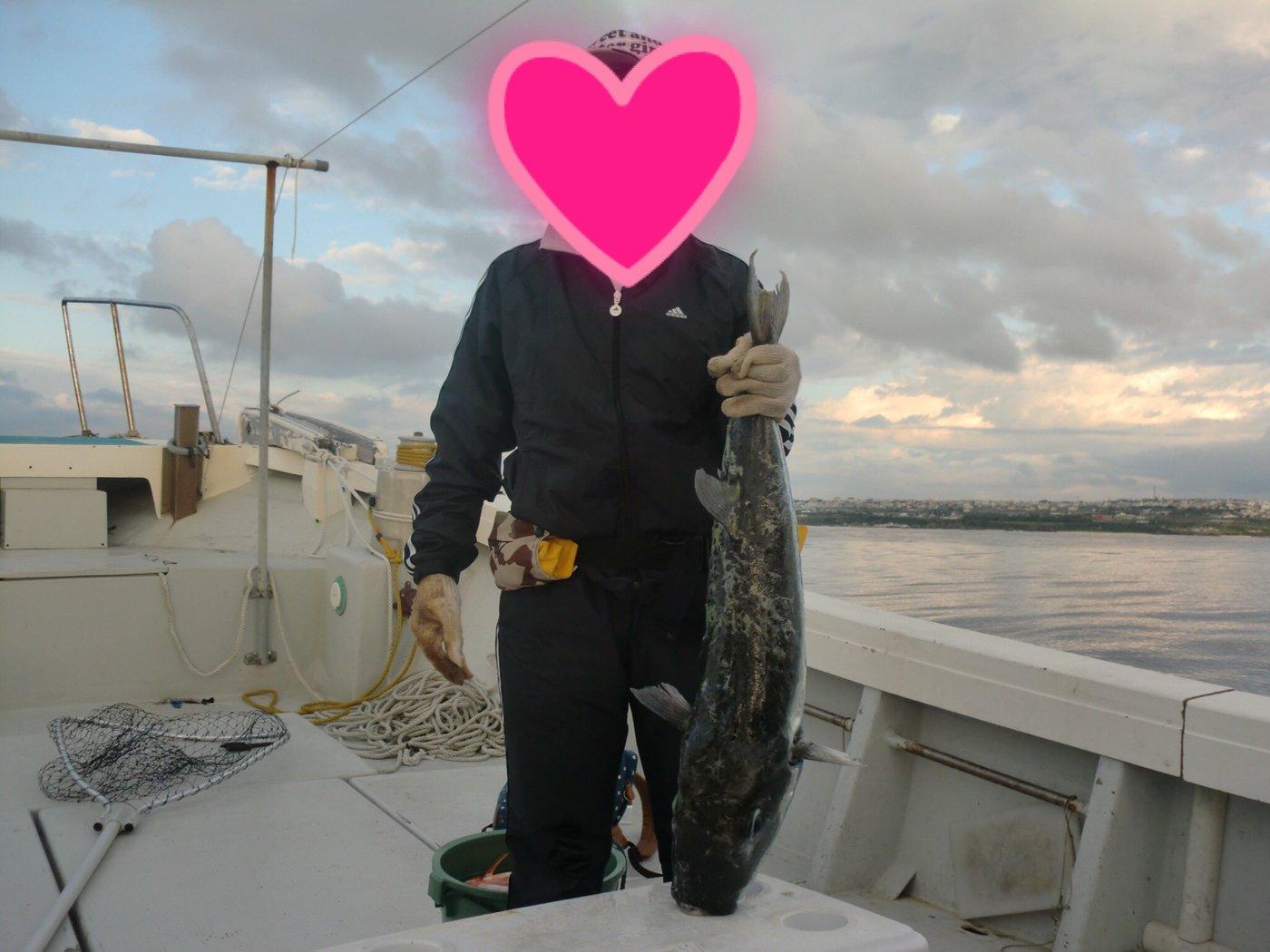 黒猫娘さんの投稿画像,写っている魚はクサフグ