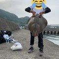 りょうすけさんの宮崎県日南市での釣果写真