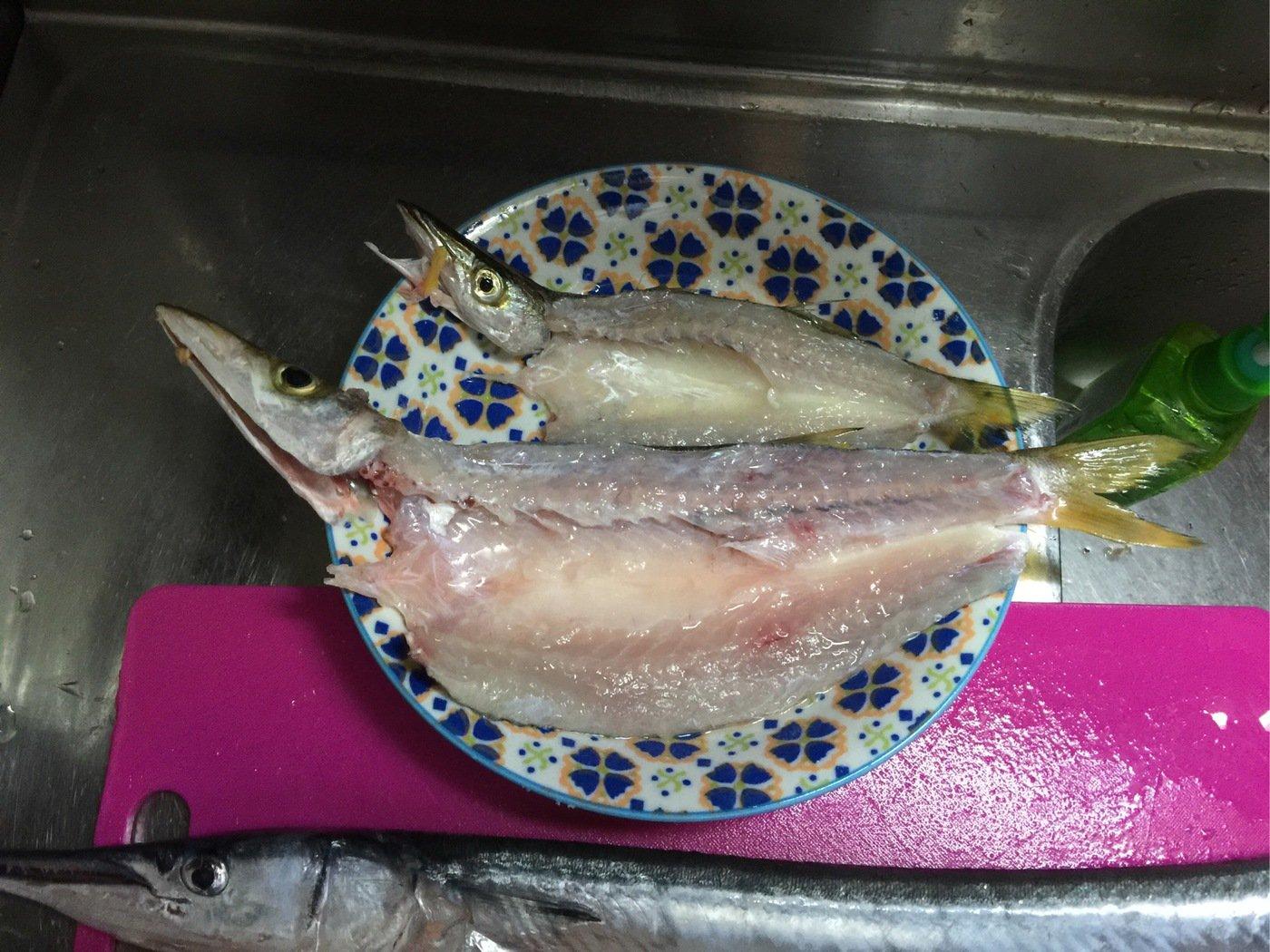 ピノこりマウスさんの投稿画像,写っている魚はカマス