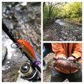 Mochonceliさんの青森県西津軽郡での釣果写真