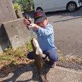 hiroさんの静岡県三島市での釣果写真