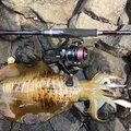 K I M Uさんの鹿児島県いちき串木野市での釣果写真