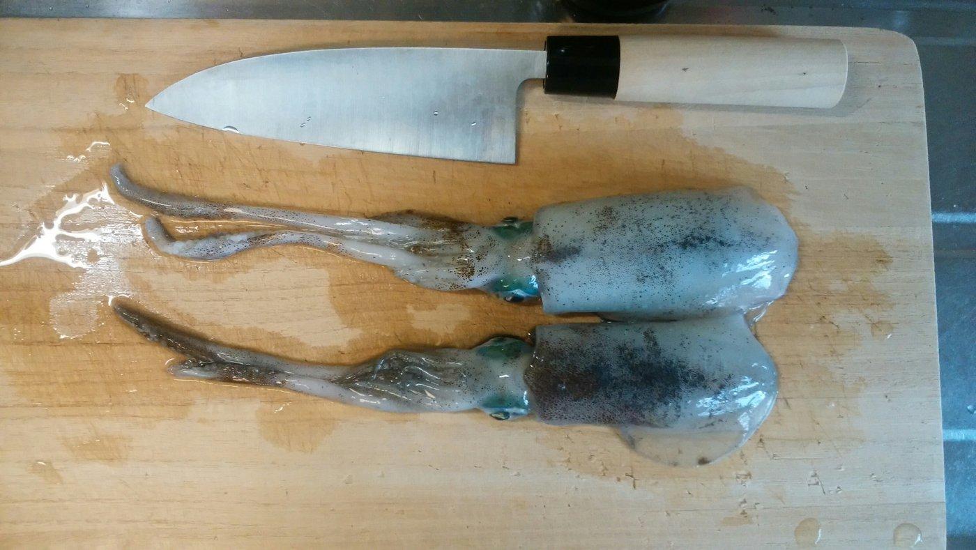 ゆーま武士さんの投稿画像,写っている魚はアオリイカ