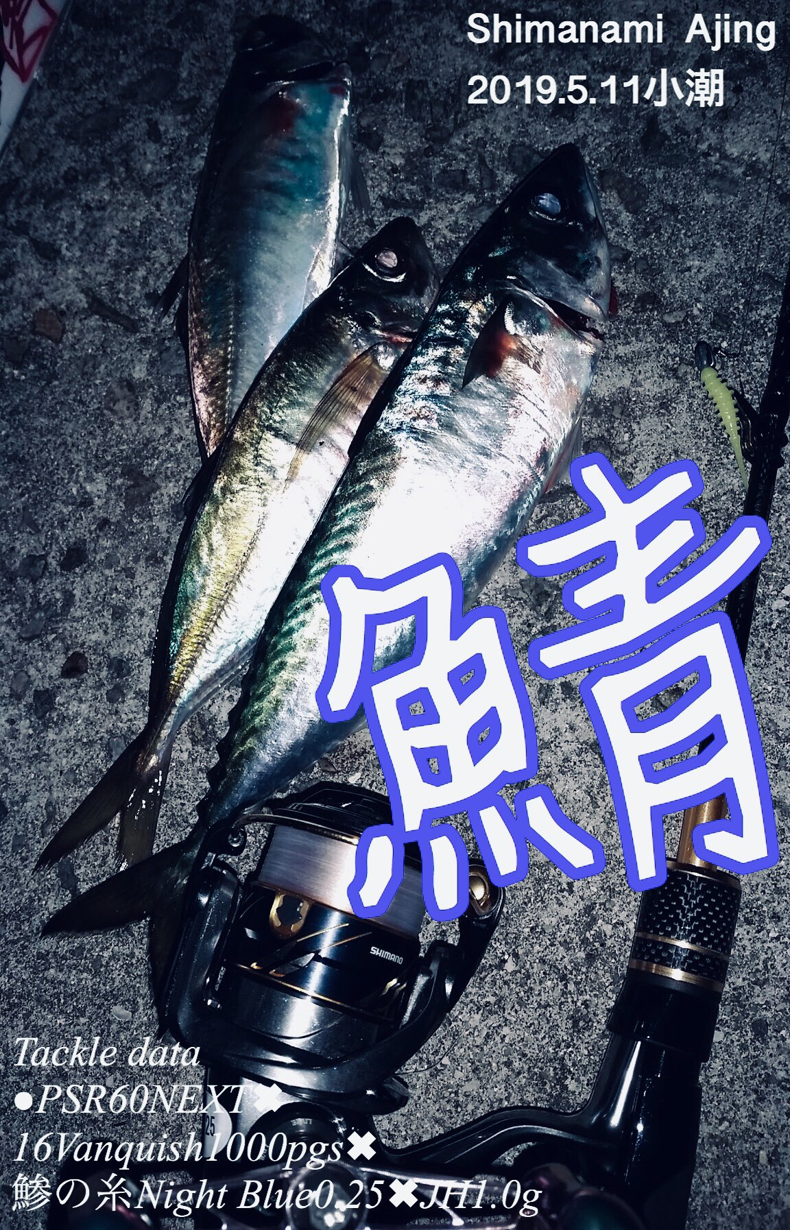 船上サラリーマンさとしさんの投稿画像,写っている魚は