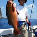 saruさんの鹿児島県鹿児島郡での釣果写真