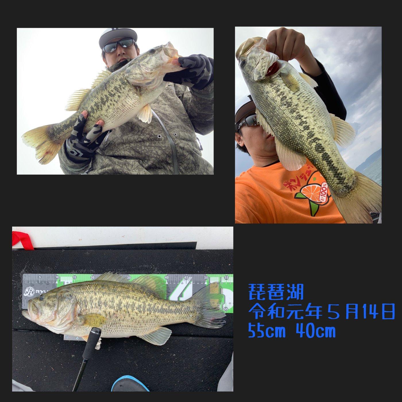 QBさんの投稿画像,写っている魚はブラックバス