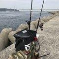 Rさんの兵庫県明石市での釣果写真