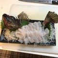 Mori Yosnkeさんの兵庫県でのカサゴの釣果写真