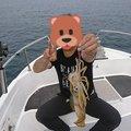 影竿さんの佐賀県東松浦郡でのアオリイカの釣果写真