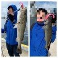 ととのすけさんの兵庫県神戸市での釣果写真
