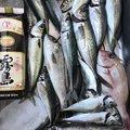 英信さんのアジの釣果写真