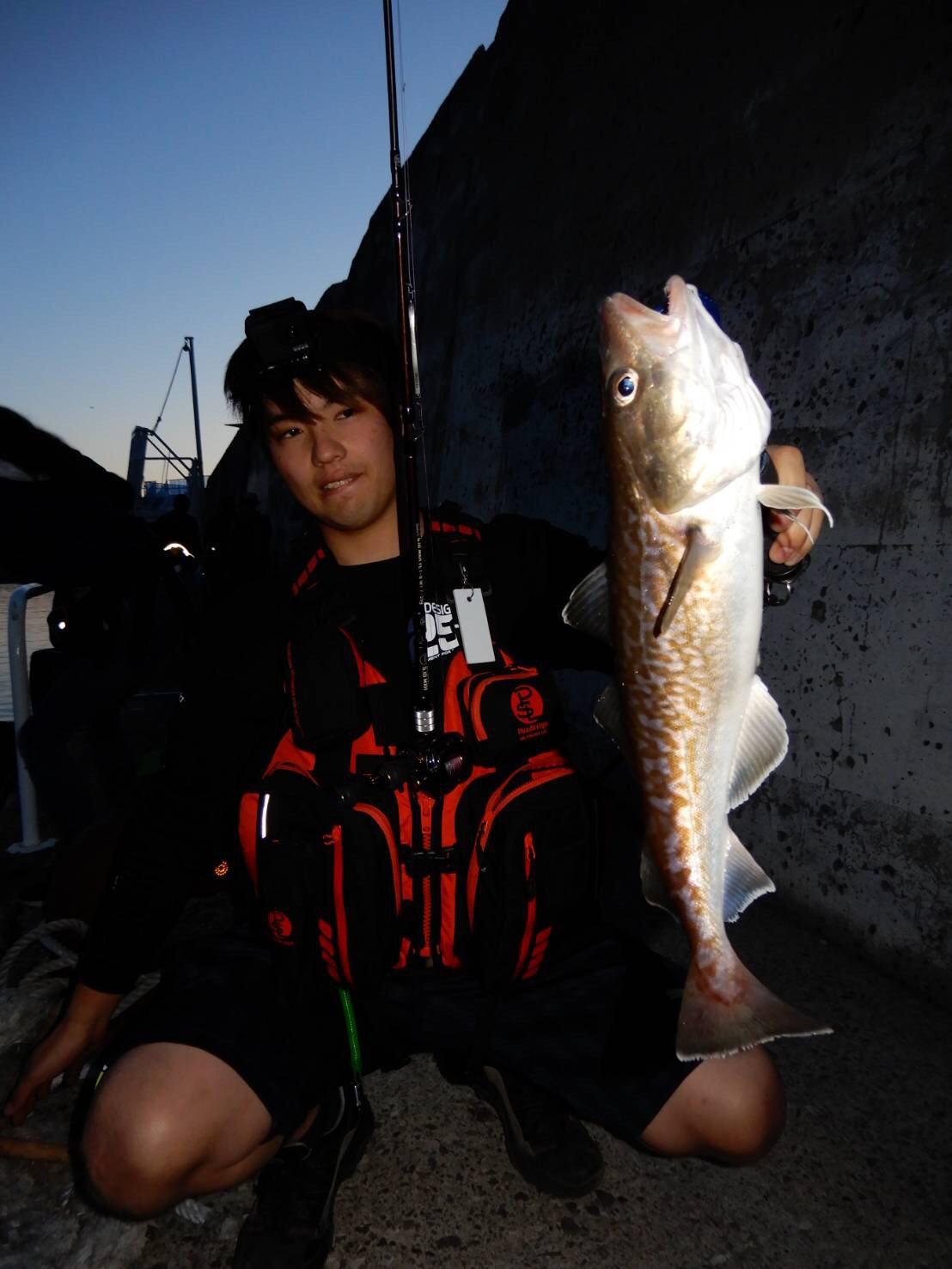 Hirotoさんの投稿画像,写っている魚はマダラ