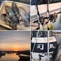 ミヤモトミチヒコさんの福岡県古賀市での釣果写真