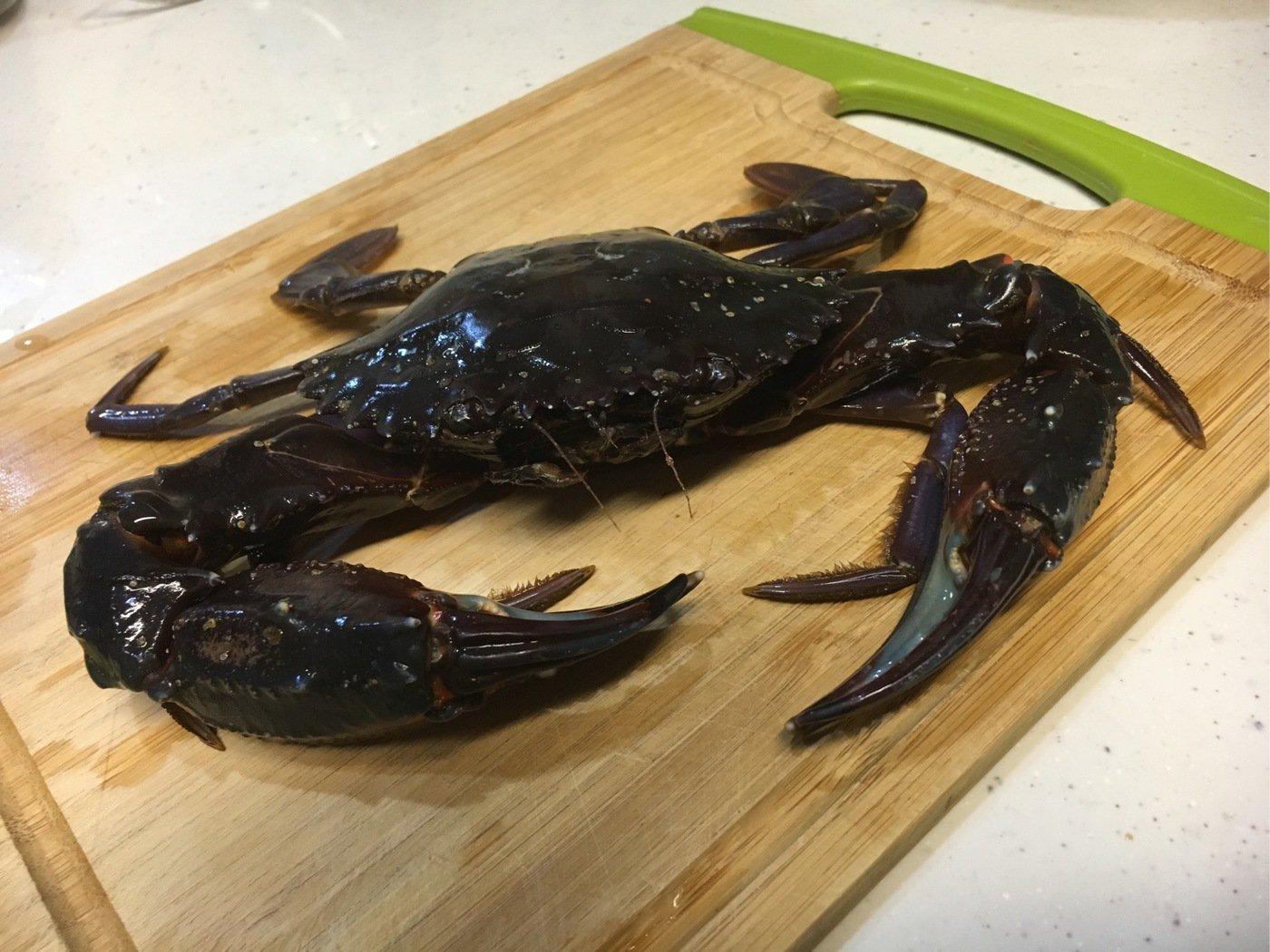 YUTOさんの投稿画像,写っている魚はアジ