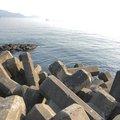 勇儀さんの福井県での釣果写真