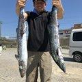 Tikimaniaさんの三重県での釣果写真