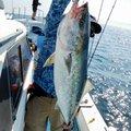 K I M Uさんの鹿児島県での釣果写真