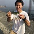 Yamada Shinseiさんの兵庫県西宮市での釣果写真